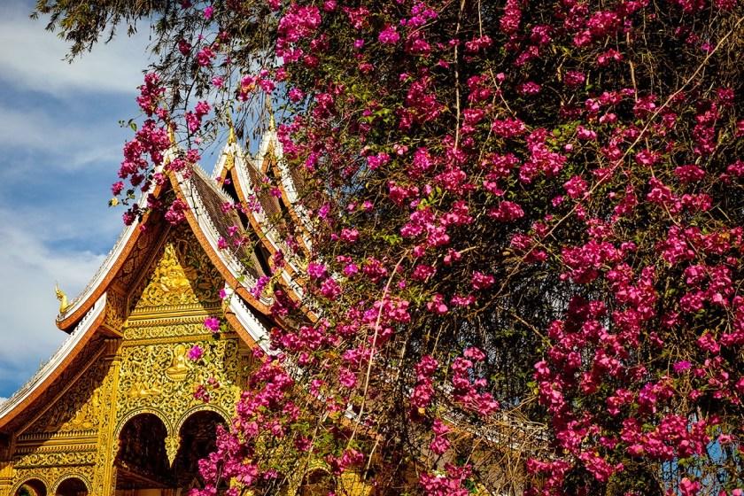 Laos-3021web