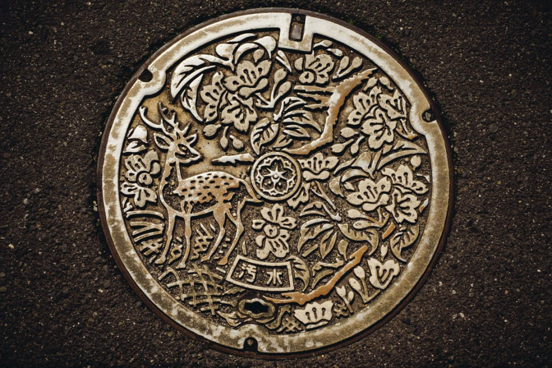 Nara-6303-1