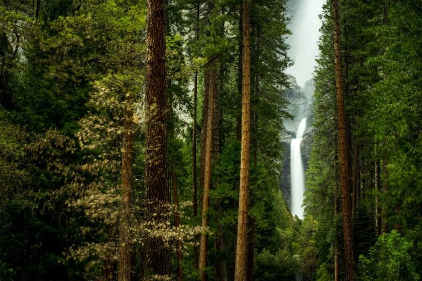 Yosemite-8109-1