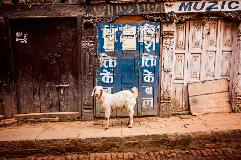 bhaktapur-6613web