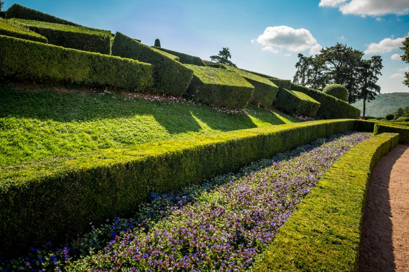 Boxwood Chaos at Marqueyssac