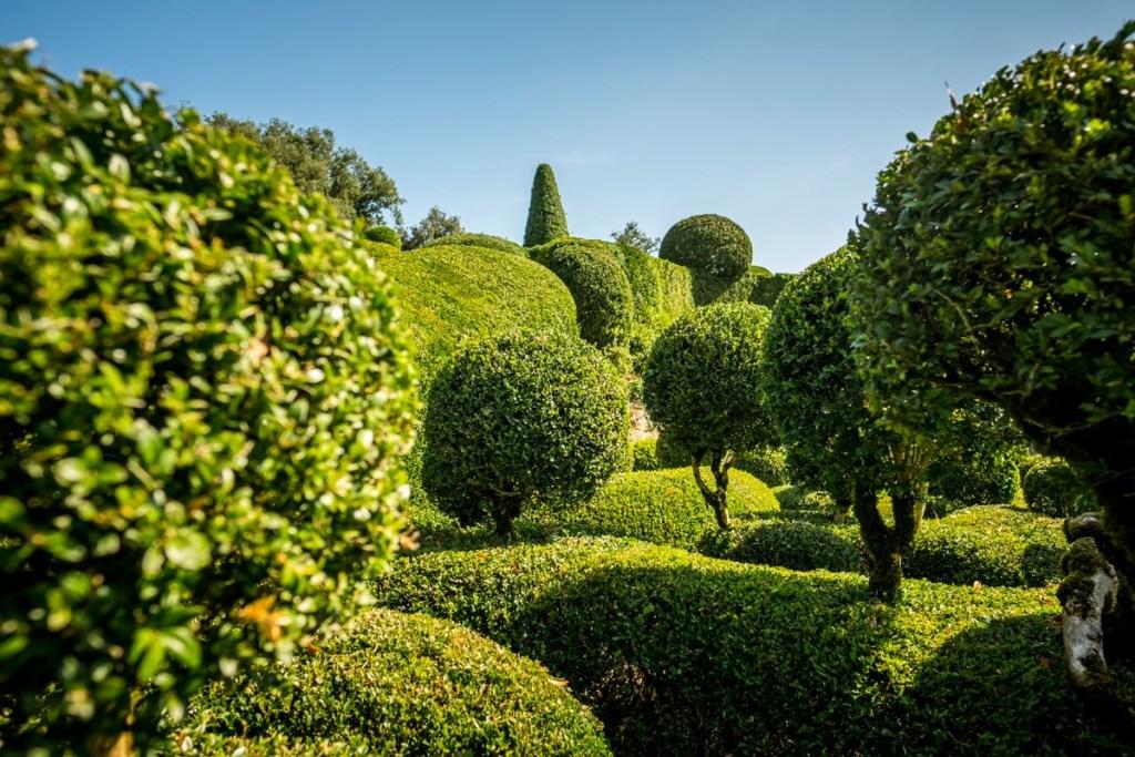 Topiary at Marqueyssac
