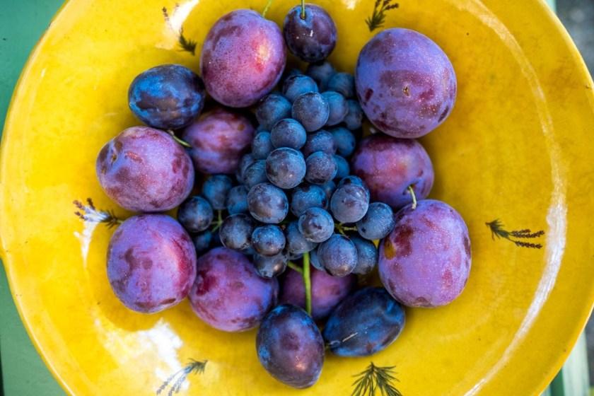 Provence Fruit