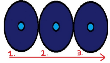 Spore Pulse Diagram
