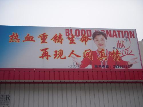 Blood Nation