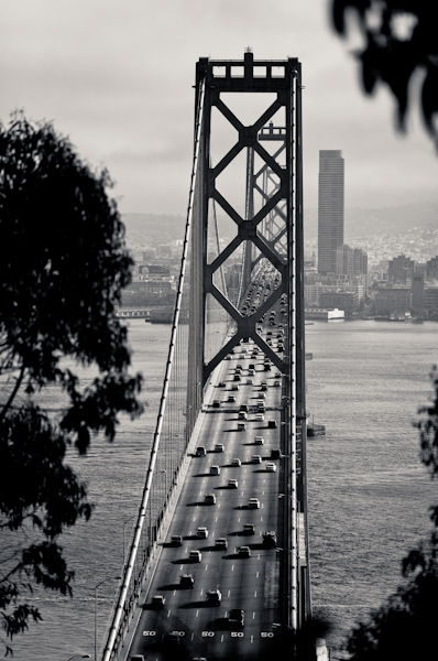 The Bay Bridge (Western Span)