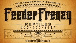 Feeder Frenzy Reptiles