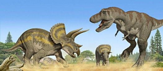 Triceratops vs tyrannosaur