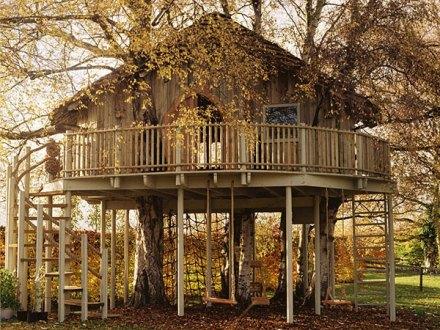 Foto de casa na árvore