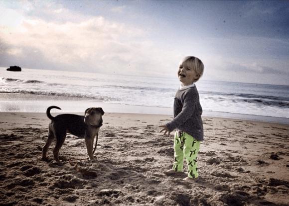 garoto e cão