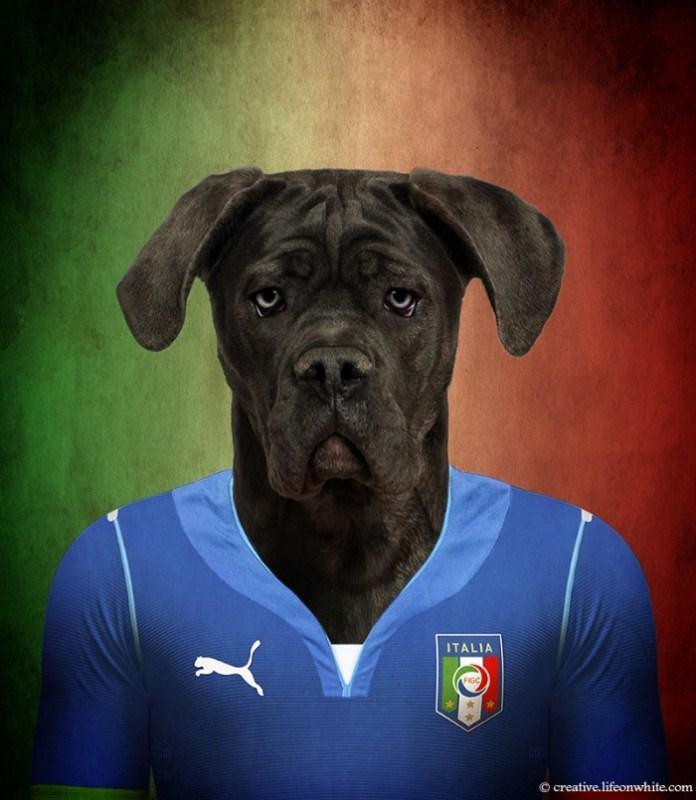 caes-selecao-italia