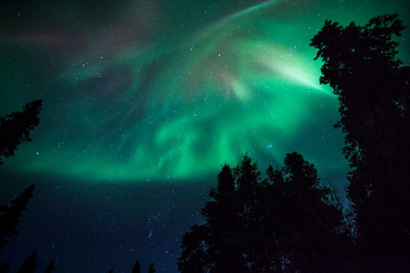aurora-borealis-denali-national-park[1]