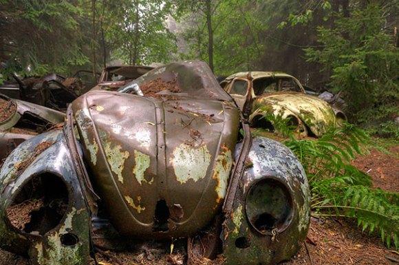chatillon-car-graveyard-abandoned-cars-vehicle-cemetery-rosanne-de-lange-2[1]