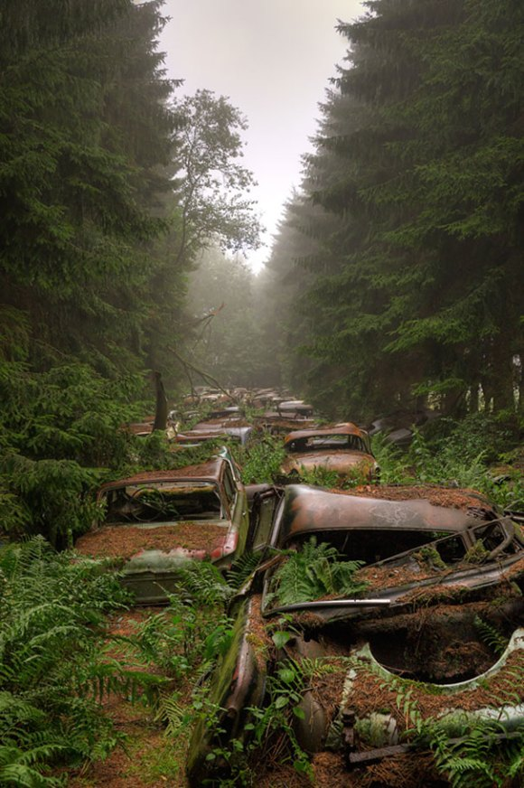 chatillon-car-graveyard-abandoned-cars-vehicle-cemetery-rosanne-de-lange-4[1]