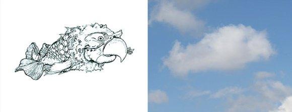 Desenho em nuvens - Papagaio-peixe (2)