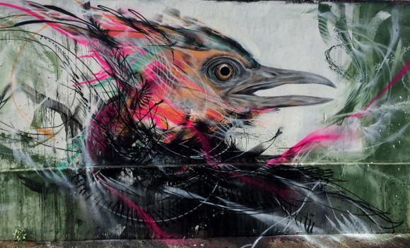 grafite spray pássaros (11)