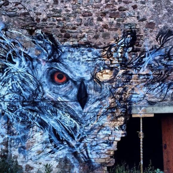 grafite spray pássaros (16)