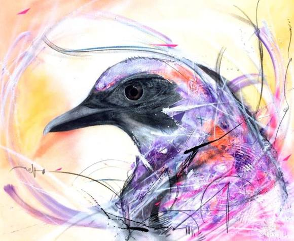 grafite spray pássaros (17)