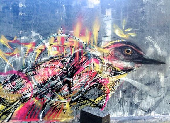 grafite spray pássaros (4)