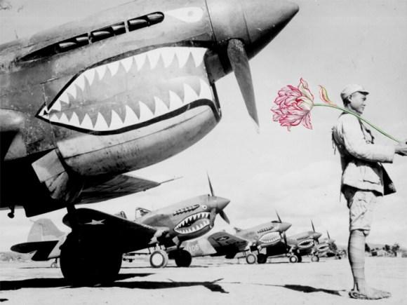 flores na guerra (2)