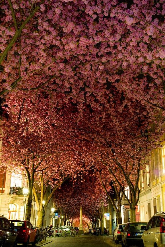 Ruas mais bonitas do mundo - 02 - Bonn - Alemanha