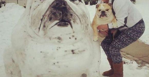 Essas pessoas estão fazendo bonecos de neve iguais a seus animais de estimação