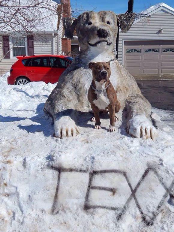 Animais de neve 5