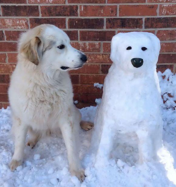 Animais de neve 7