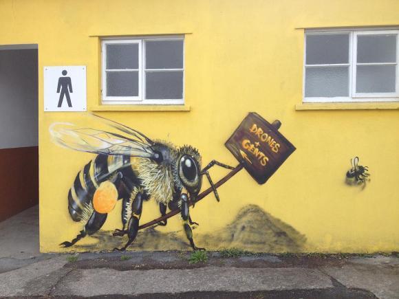 Grafite abelhas 11