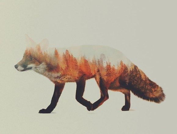 Fotos de dupla exposição - animais e floresta 1