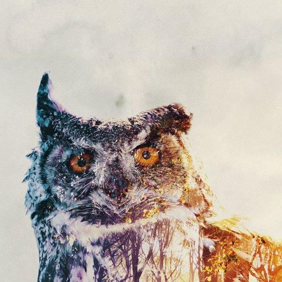 Fotos de dupla exposição - animais e floresta 23