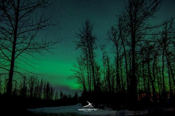 Aurora Boreal - Alasca 3