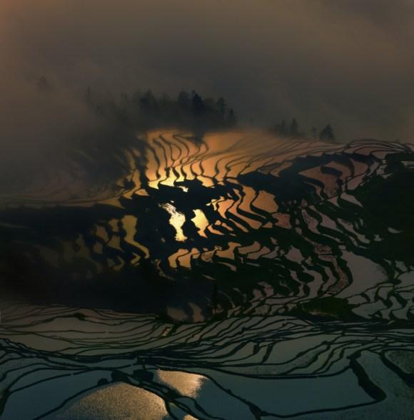 Campos de arroz chineses 4