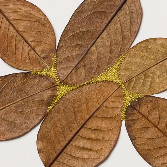 costura em folhas secas 5