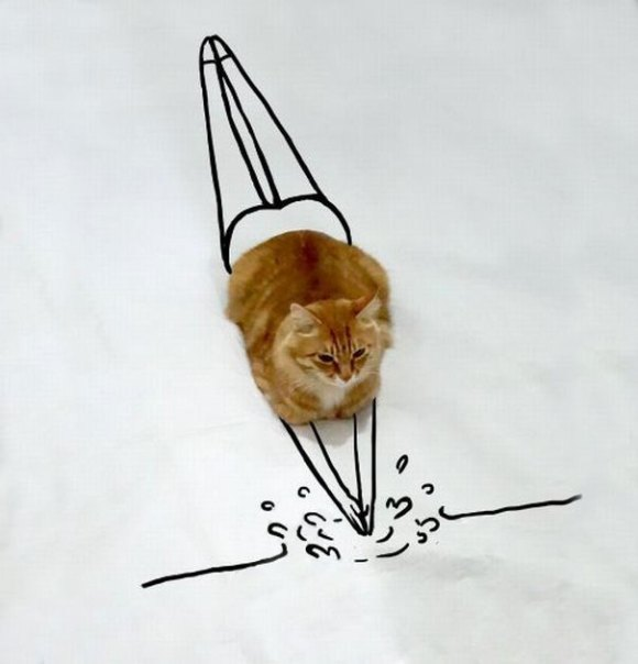 Desenhos sobre a foto de um gato 10 - Sofia