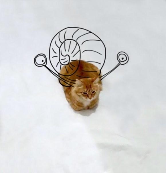 Desenhos sobre a foto de um gato 15 - Paulina Tikunova