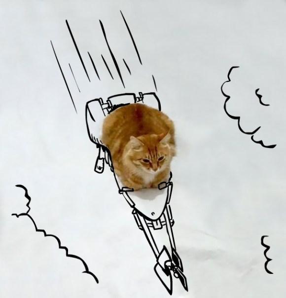 Desenhos sobre a foto de um gato 18 - Jernej Žumer