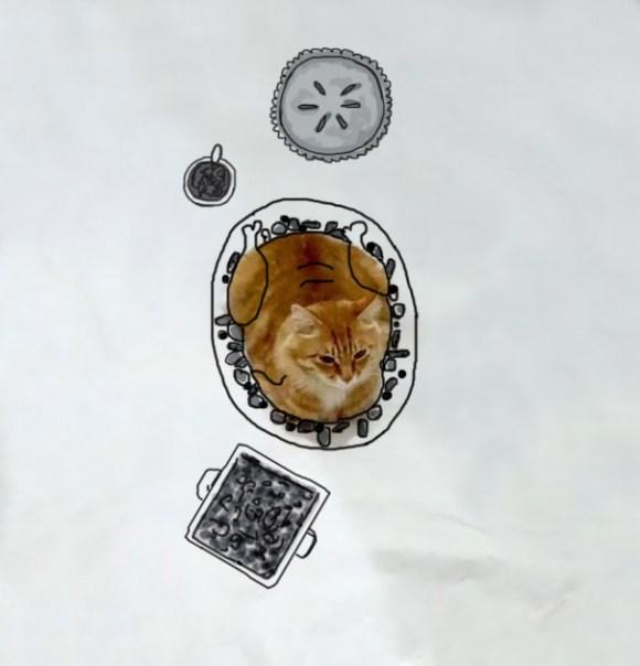 Desenhos sobre a foto de um gato 7 - Sydney Scott