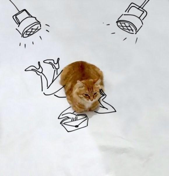 Desenhos sobre a foto de um gato 8 - Paulina Tikunova