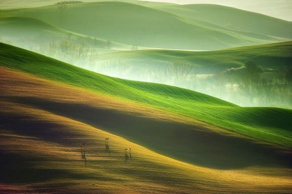 Toscana - Itália 11