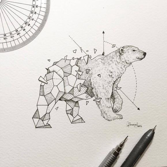 animais e geometria 1