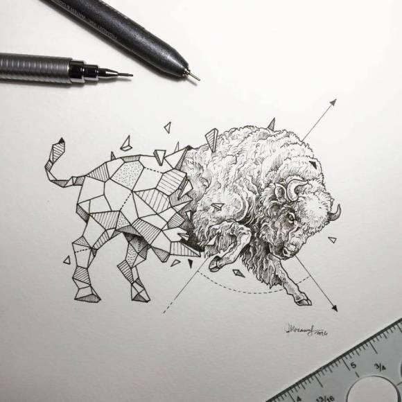 animais e geometria 10