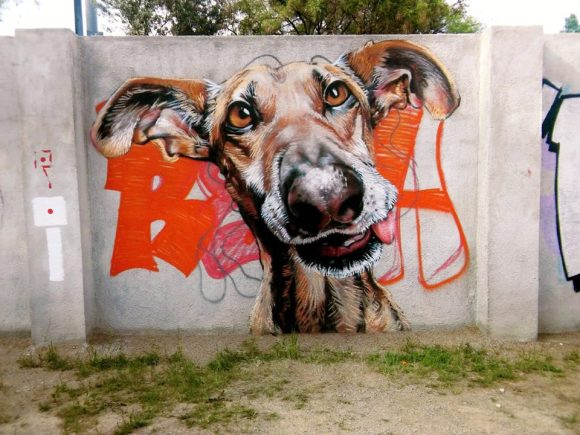 grafite cachorro 3