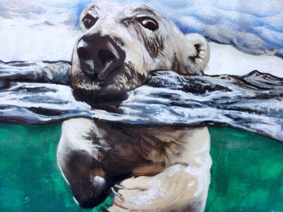 grafite cachorro 6