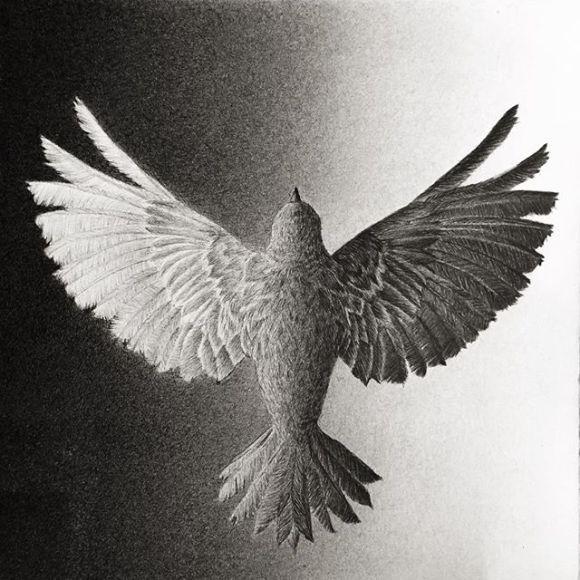 Pássaro feito