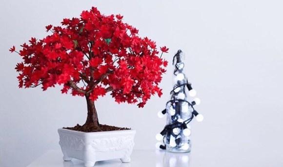 Bonsai vermelho com luzes do lado