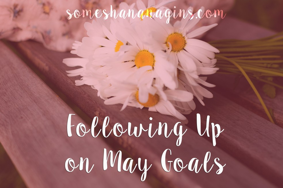 Following Up On May Goals - Some Shananagins
