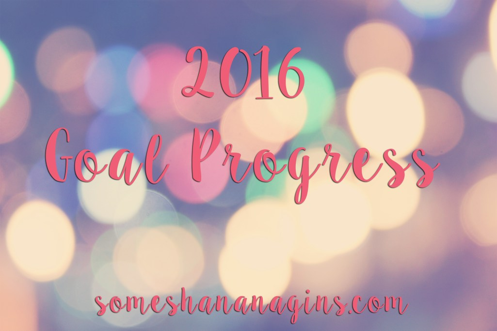 2016 Goal Progress - Some Shananagins