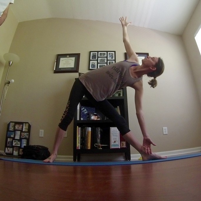 Yoga Challenge Day 13 - Triangle Pose - Some Shananagins