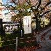 京都哲学の道・永観堂へ紅葉を見に行って来ました!~前編~